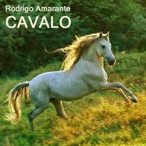 Rodrigo Amarante - Cavalo Cover