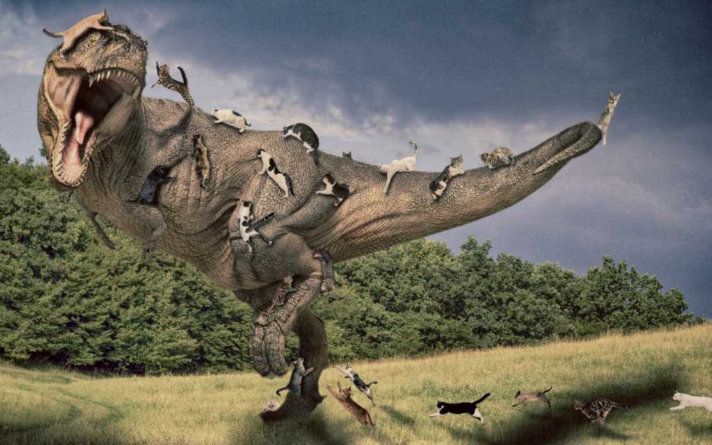 tyrannosaurus_rex_artwork_cats_photo_manipulation_1920x1200_77354